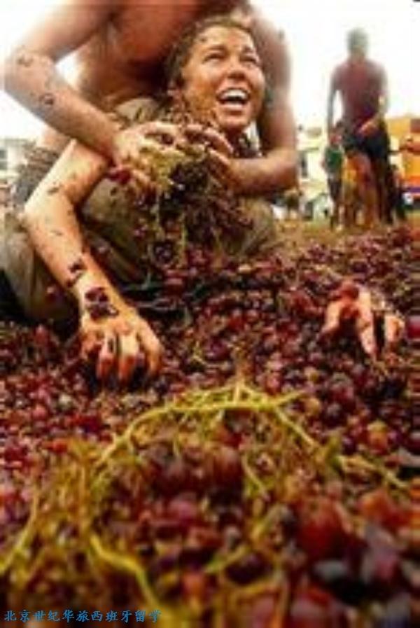 洛格罗尼奥的葡萄收获日   时间:9月底